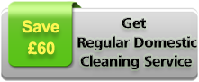 Domestic Cleaning Offer