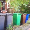 £250m bin funding could aid domestic cleaning