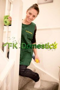 Domestic Cleaners South West London