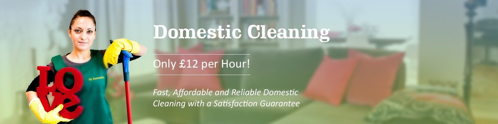 Domestic Cleaning Slide