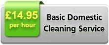 Basic Domestic Service