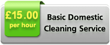 Basic Domestic Cleaning Service