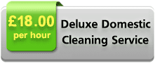Deluxe Domestic Cleaning Service
