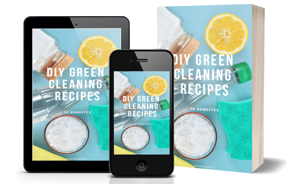 Cleaning Recipes Cover Image